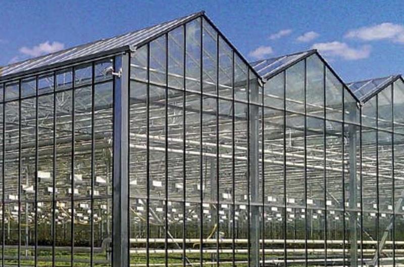 Фермерская теплица площадью 57,6 м2